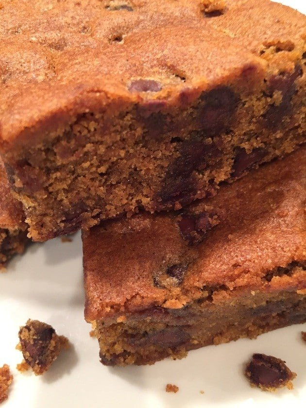 Pumpkin Chocolate Chip Squares Close Up