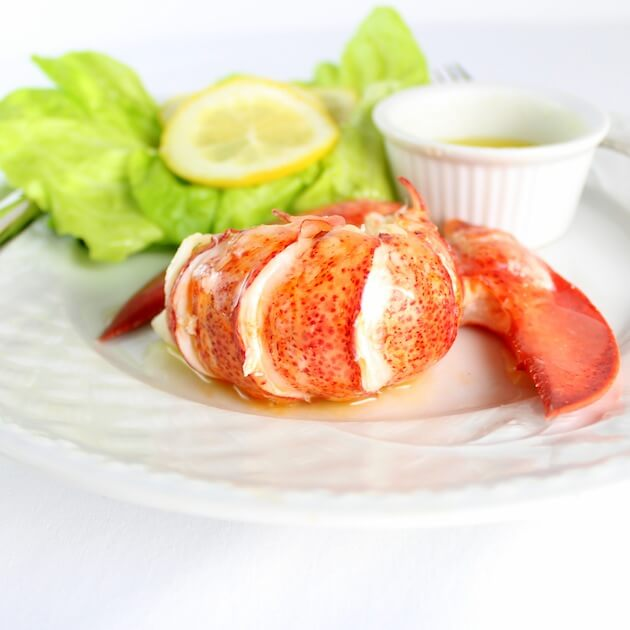 Lobster tail meat on plate with drawn butter