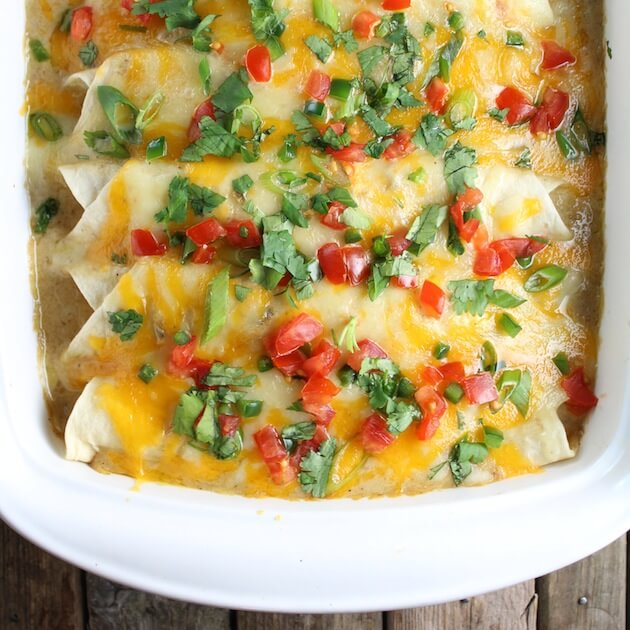 Four Chicken Enchiladas in casserole dish garnished with chopped tomatoes and cilantro