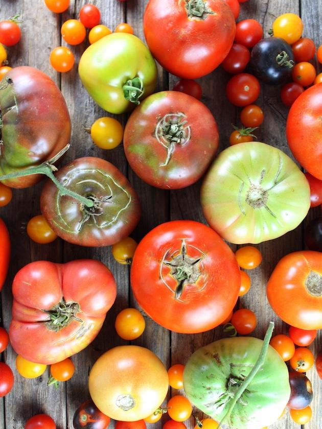 Three Cheese Tomato Thyme Galette