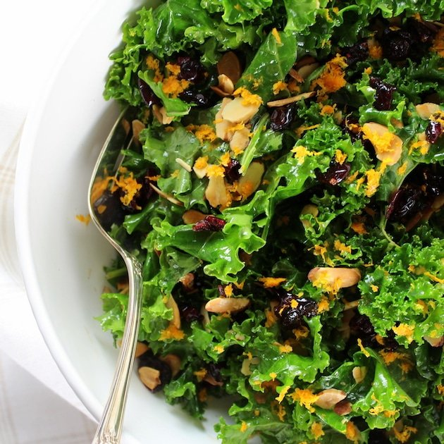 Partial Dish Kale Orange Cranberry Salad