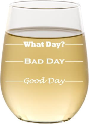 10 Awesome Holiday Gift Ideas For Under $50! funny-etched-wine-glass