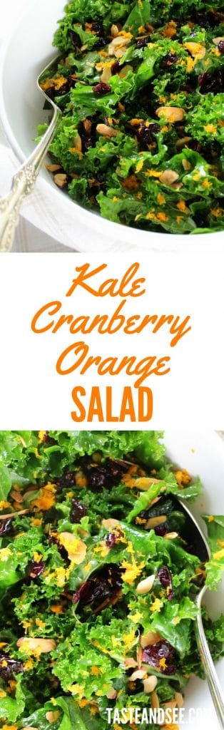 rsz_kale_orange_cranberry_salad_long_pin_5