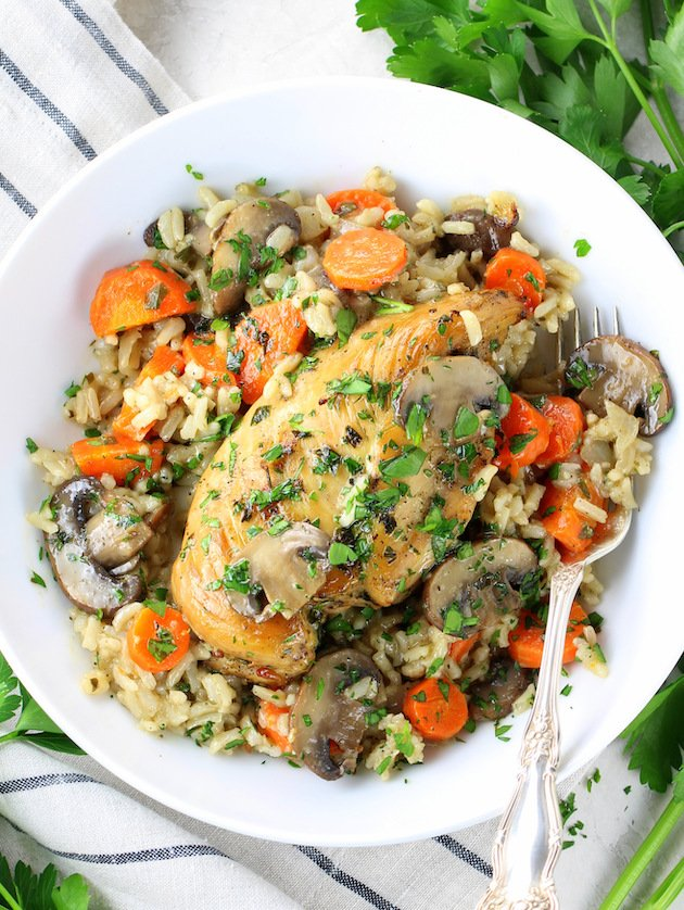 How to make Easy Instant Pot Chicken and Rice - plate of chicken and rice