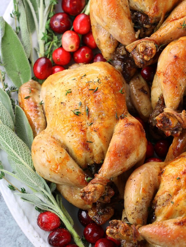 instant pot cornish game hens