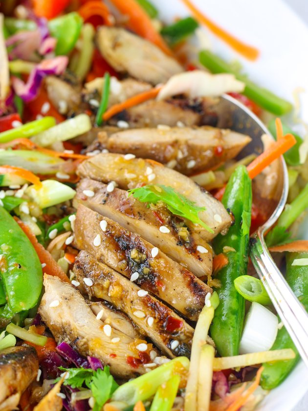 Very close up eye level grilled chicken over asian salad
